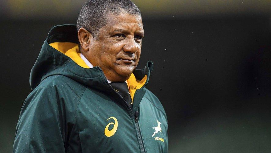 Les springboks  n'ont pas encore sauvé Coetzee