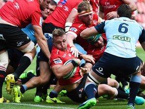 Super Rugby : les Lions reçus trois sur trois en Australie