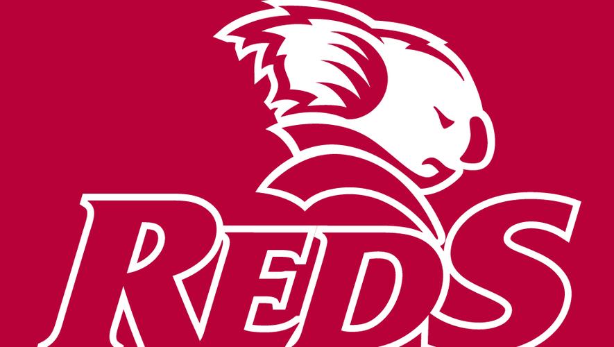 Super Rugby : présentation des Queensland Reds