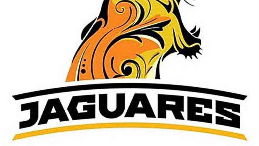 Jaguars toutes griffes dehors !