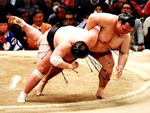 Le Bulgare Kosuke (torse nu, poitrine opulente), 1,94 m et 220 kg, fait partie des meilleurs combattants du circuit.