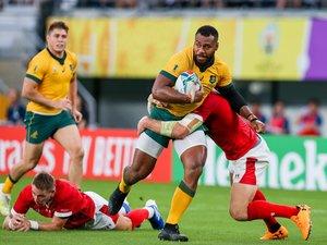 Samu Kerevi (Australie) face au Pays de Galles