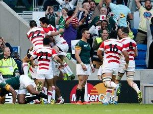La joie des Japonais après leur victoire contre l'Afrique du Sud durant la Coupe du monde 2015